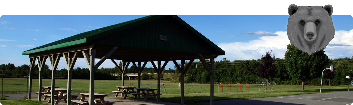 Picture of the sun shelter at the rear of the school.